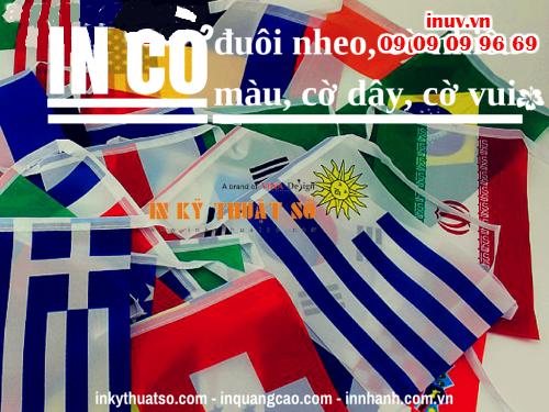 Cờ đuôi nheo, cờ nhiều màu, cờ dây, cờ vui có thể được thực hiện bẳng cách in ấn với chất liệu PP, hiflex với thông tin hình ảnh cụ thể cho sự kiện, in ấn tại Công ty In Kỹ Thuật Số - Digital Printing